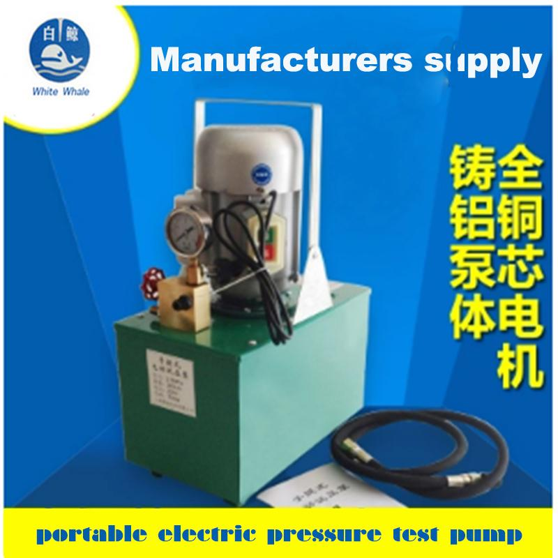 The Whole Set Pressure Test Pump Pipe Pressure Test Pump DSY-6.0 360l/h 0.75kw
