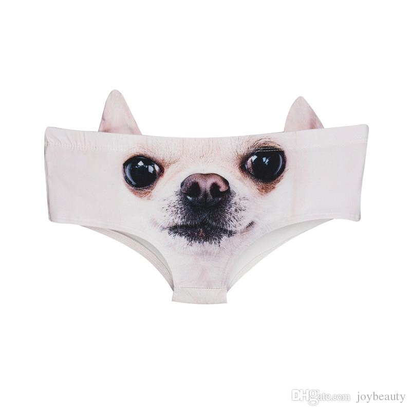 Women Ears Panties Chihuahua 3D Full Print Girl Free Size Stretchy Briefs Lady Digital Graphic Underwear (GL46724)