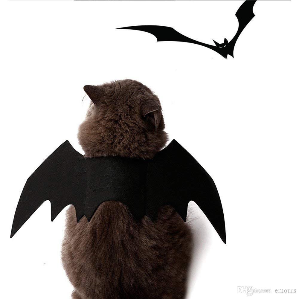 هالوين الحيوانات الأليفة الخفافيش أجنحة القط الخفافيش زي الحيوانات الأليفة ملابس سوداء بارد جرو القطط تبدل هالوين الكلب الملابس