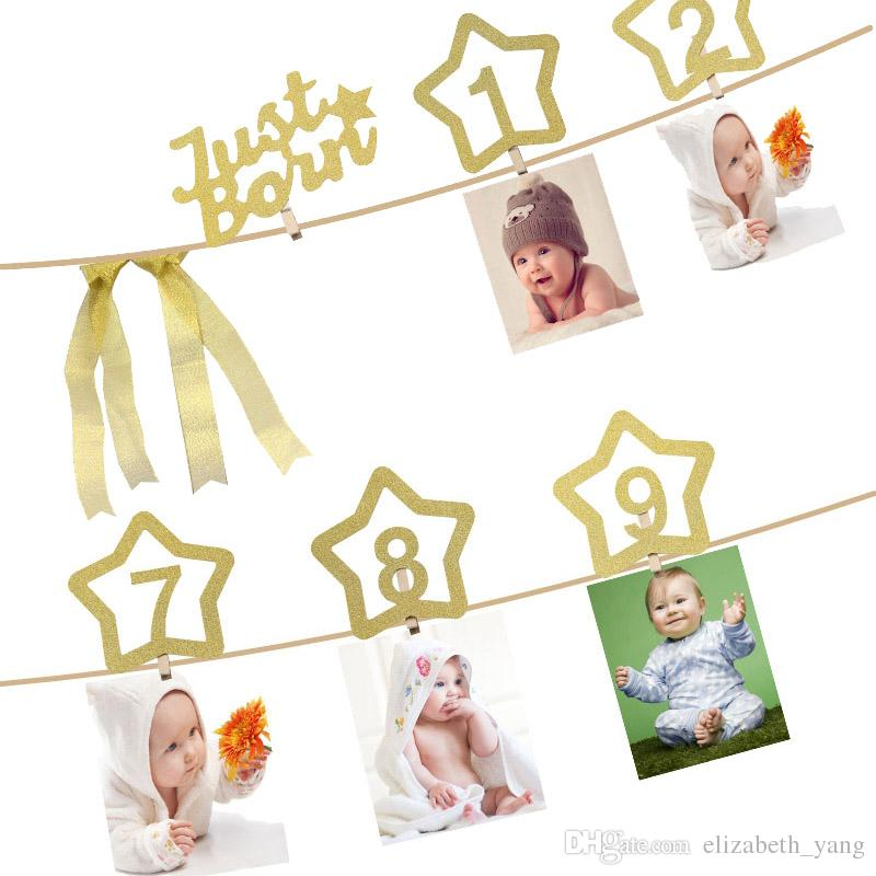 Monthly Milestone Photo banner for... 1st Birthday Glitter Decorations for Girl