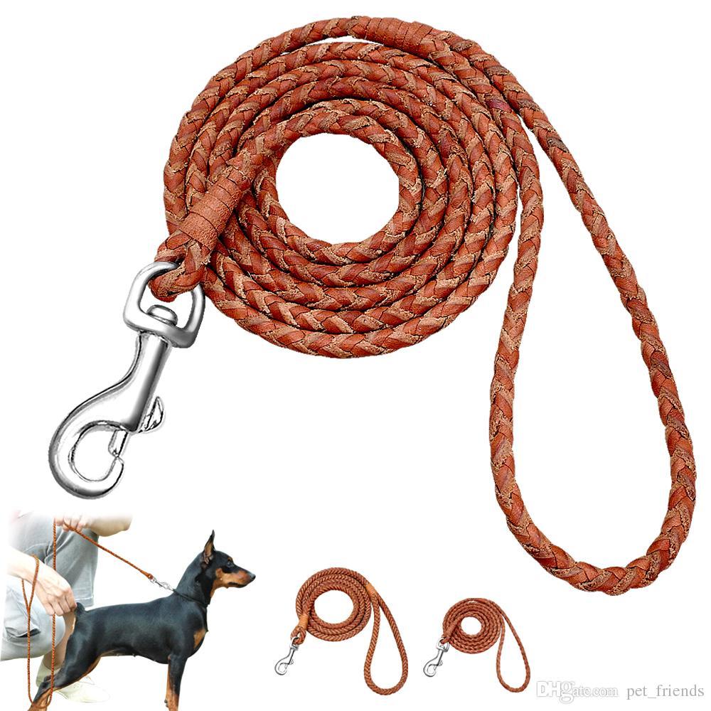 Tipo de cuerda trenzada plomo de perro