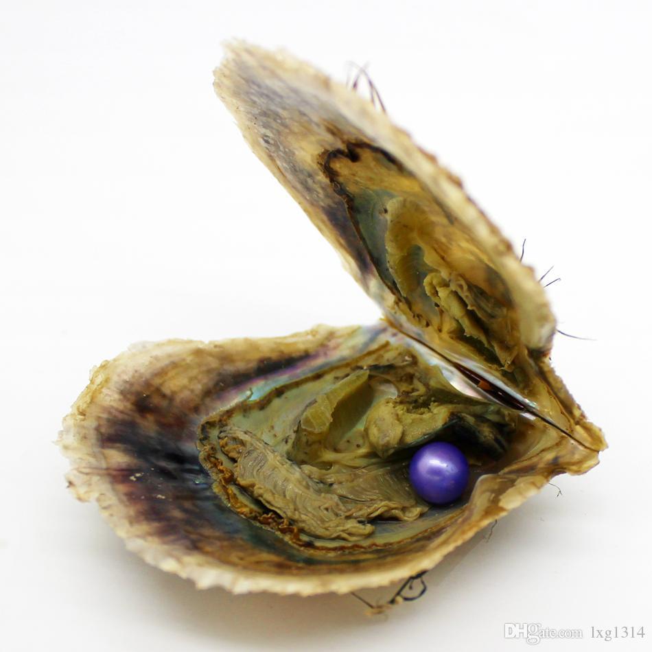 Embalagem a vácuo por atacado 6-7mm12 # Color Pearl One em Akoya Salt Oyster