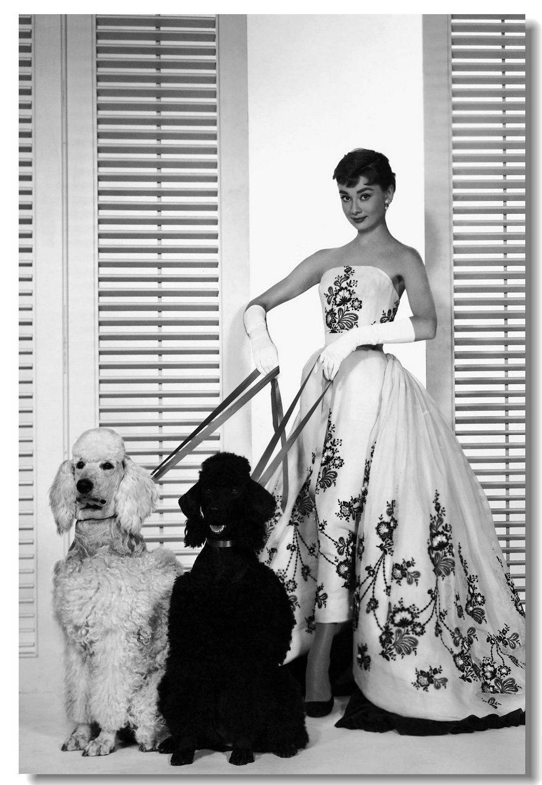 Audrey Hepburn Star Star Room Club Art Seda Póster 20x30 24x36 24x43