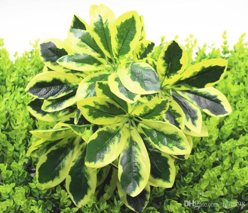Yeşil bitkiler, saksı bitkileri, süs bitkileri, yaprakları, lastik yaprakları, 9 kafaları, ördek ayakları, L784 simülasyonu