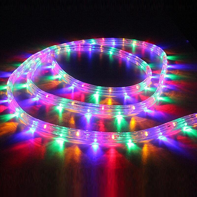 detailed look 1e2fa 5635b Rainbow Tube LED Strip Light Round Two Wire 220V Flexible Chrismas  Waterproof Outdoor Indoor Decoration Lights With Controller Warm White Led  Strip ...