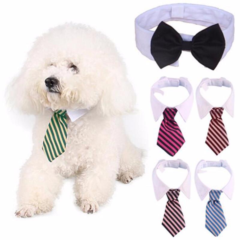 Bow Striped Cat Dog Grooming Tie Coleira ajustável Collar gravata White Dog gravata Wedding Party Gravata Cachorro