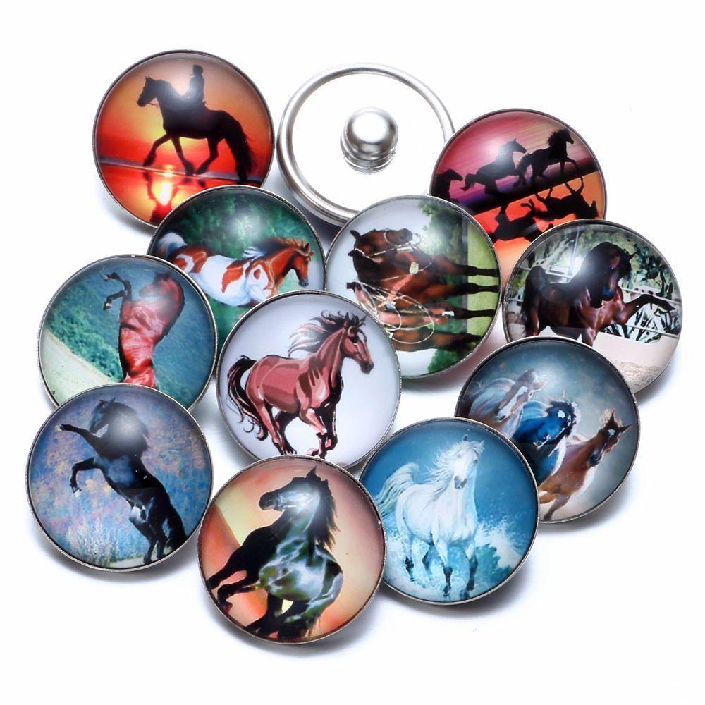 12pcs / lot Cavalo temáticos encantos de vidro 18mm botão Snap jóias para 18 milímetros Snaps Pulseira snap Jóias KZ0677