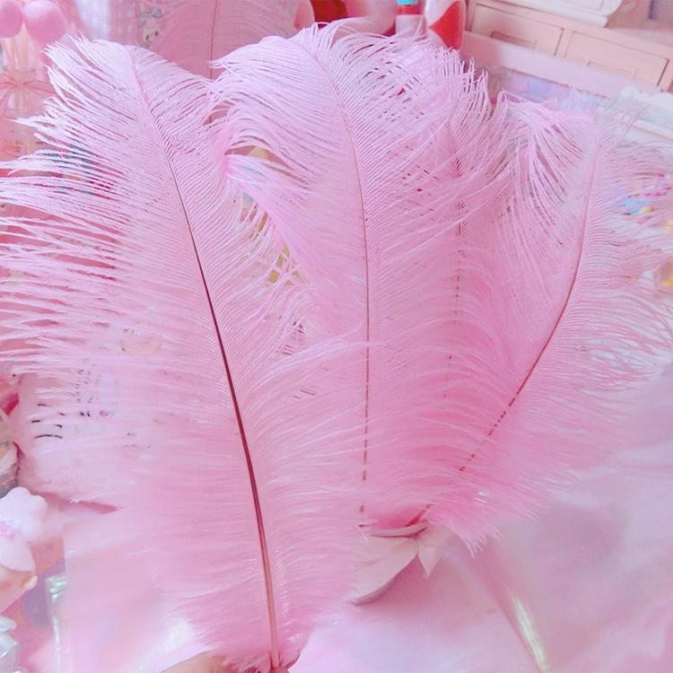 Rosa Federschmuck Dekorieren Sie einen Raum mit Federn und Blumenarrangement Fotografieren Hintergrund Party DIY Dekoration 2pc