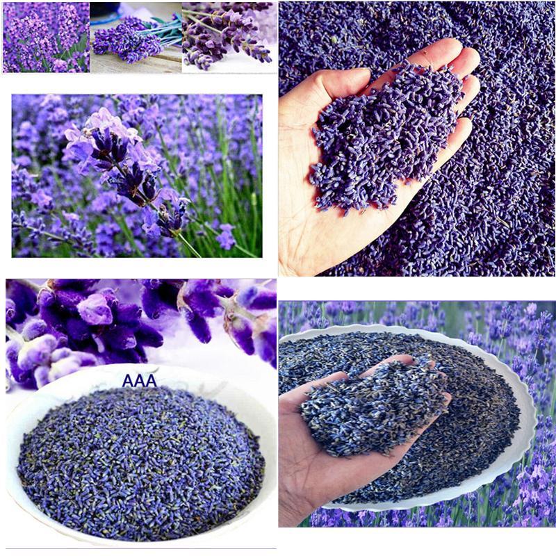 dried flowers seed Natural Lavender Dried Flower Grain Bulk Lavender Grain Filling 1 Ounces Real Natural lasting Lavend