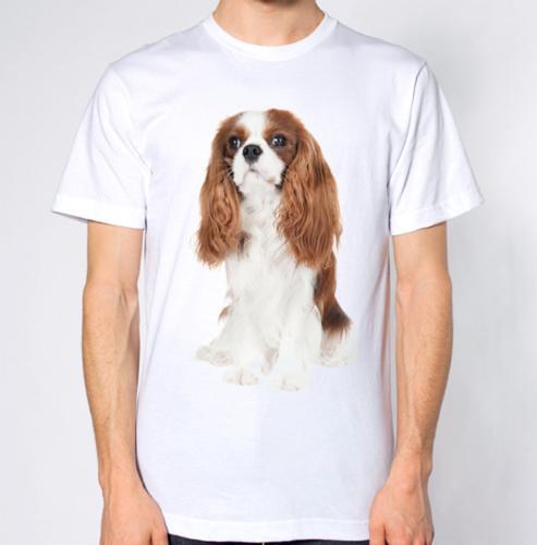 461e2cd4d54 Cavalier King Charles camiseta para perros 2018 Nueva camiseta con estampado  de camisetas para hombre Tops