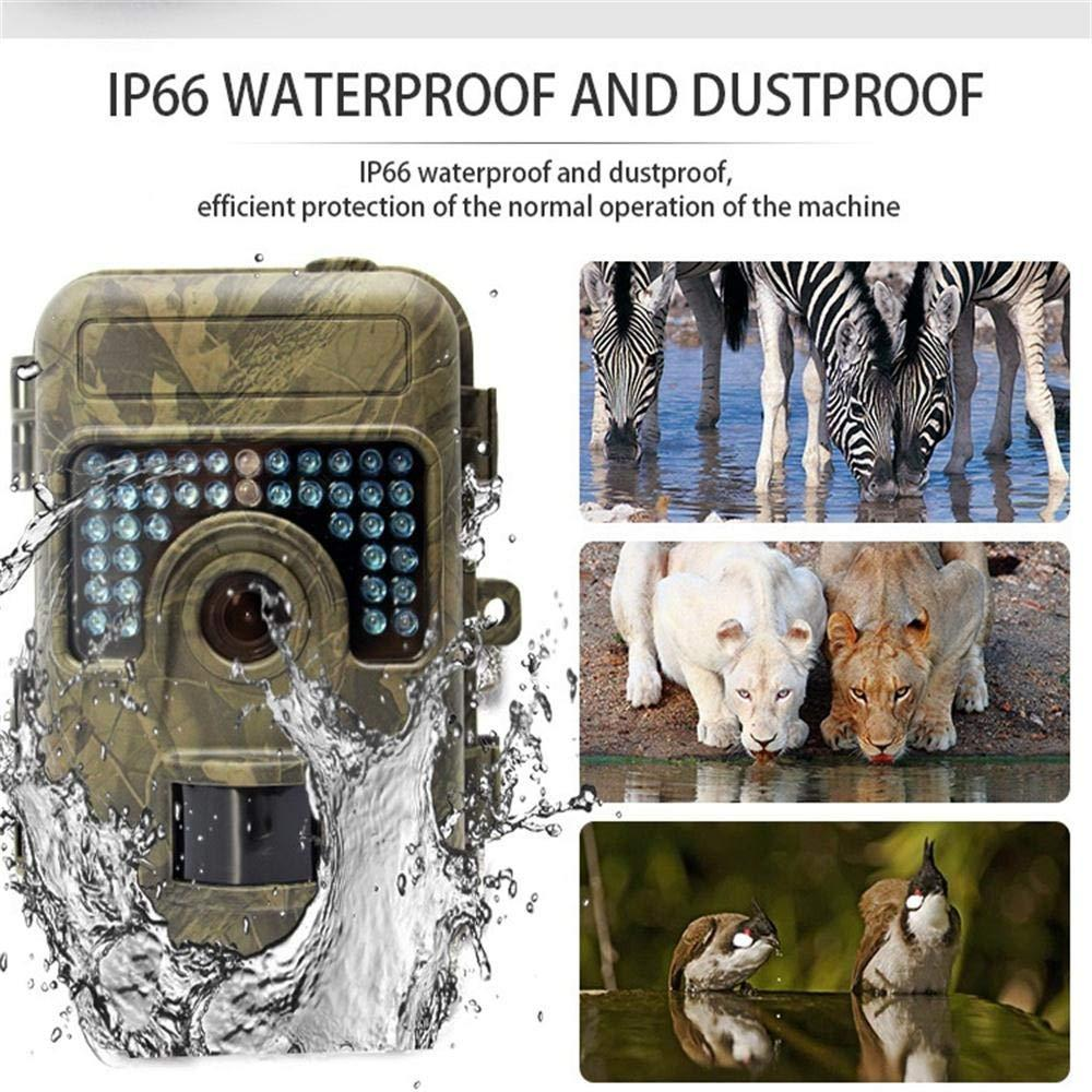 1080P 16MP Night Vision Hunting Camera with 2.36 inch LCD Display No Glow 38 LED Fast Trigger IP66 Waterproof Outdoor Trail CAM