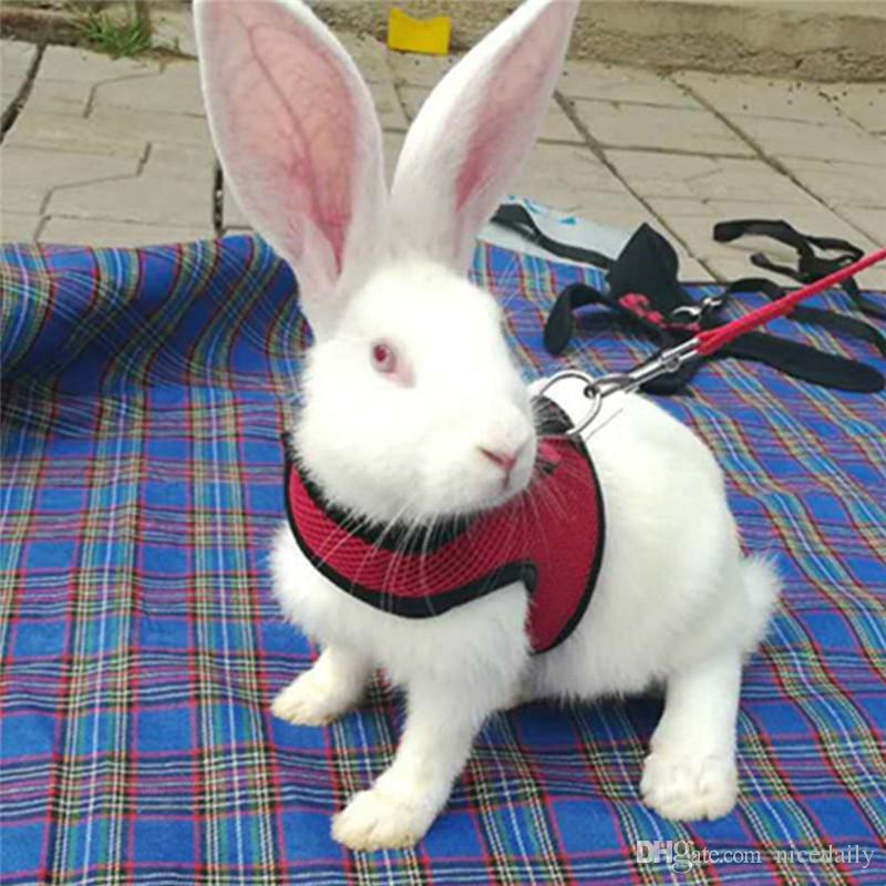 Pet Tavşan Yürüyüş Koşum Tasma Kurşun, Yavru Tavşanlar Hamster Tasma Yelek Küçük Hayvan için Yumuşak Çekiş Halat Ayarlanabilir Yumuşak Koşum ve Kurşun Set