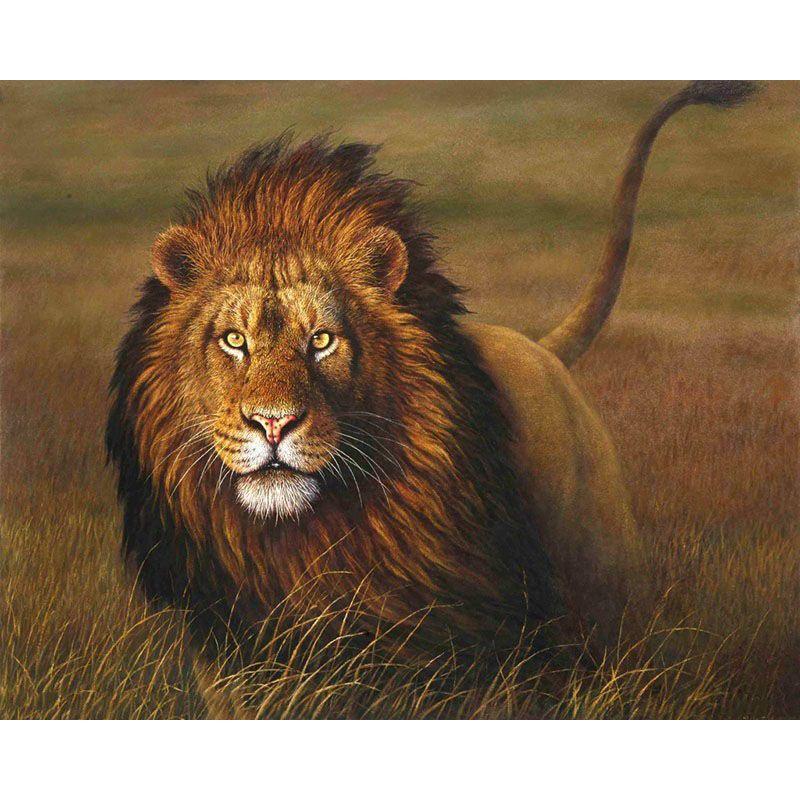 Leoni Frameless Animali Pittura Fai da te con i numeri Kit Dipinto acrilico su tela Dipinto ad olio dipinto a mano per la decorazione domestica 40x50cm