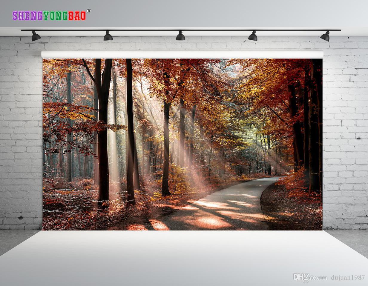 Vinyl Custom Scenery theme Photography Backdrops Prop digital printed Photo Studio Background ZP-148