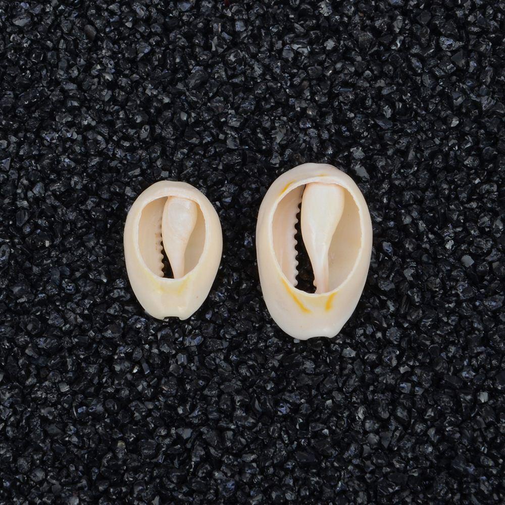 50 шт. 1.8-2.3 см Природный Пляж Sea Shell Бусы Каури Каури Бусы Для Ювелирных Изделий DIY решений Ожерелье Браслет Подарок для Друга