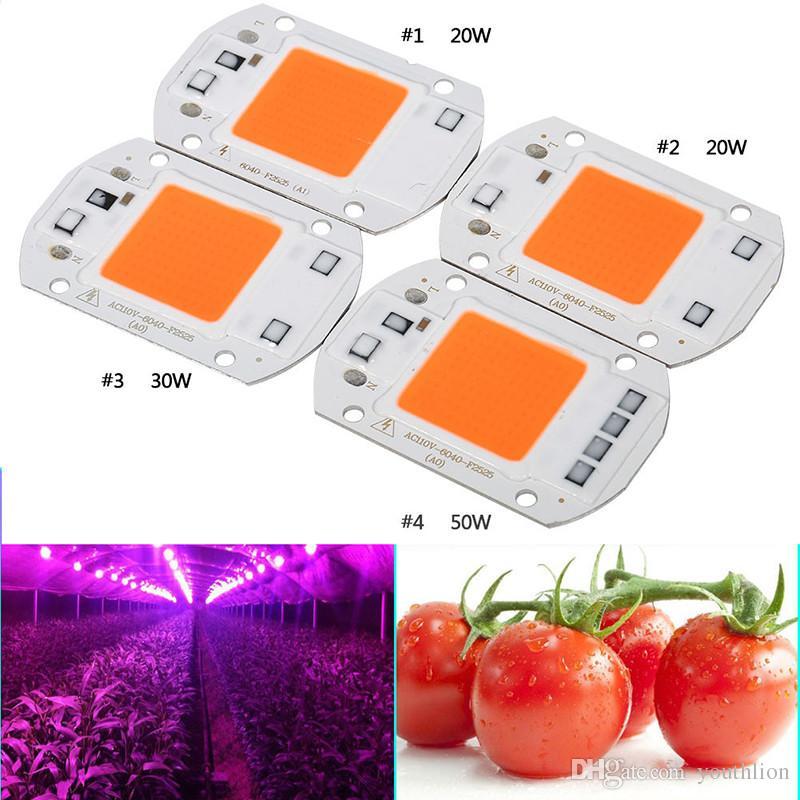 LED 식물 성장 라이트 칩 110V / 220V 20W / 30W / 50W Lampada 전체 spwctrum COB LED 칩에 대 한 고품질 온실 수경 식물