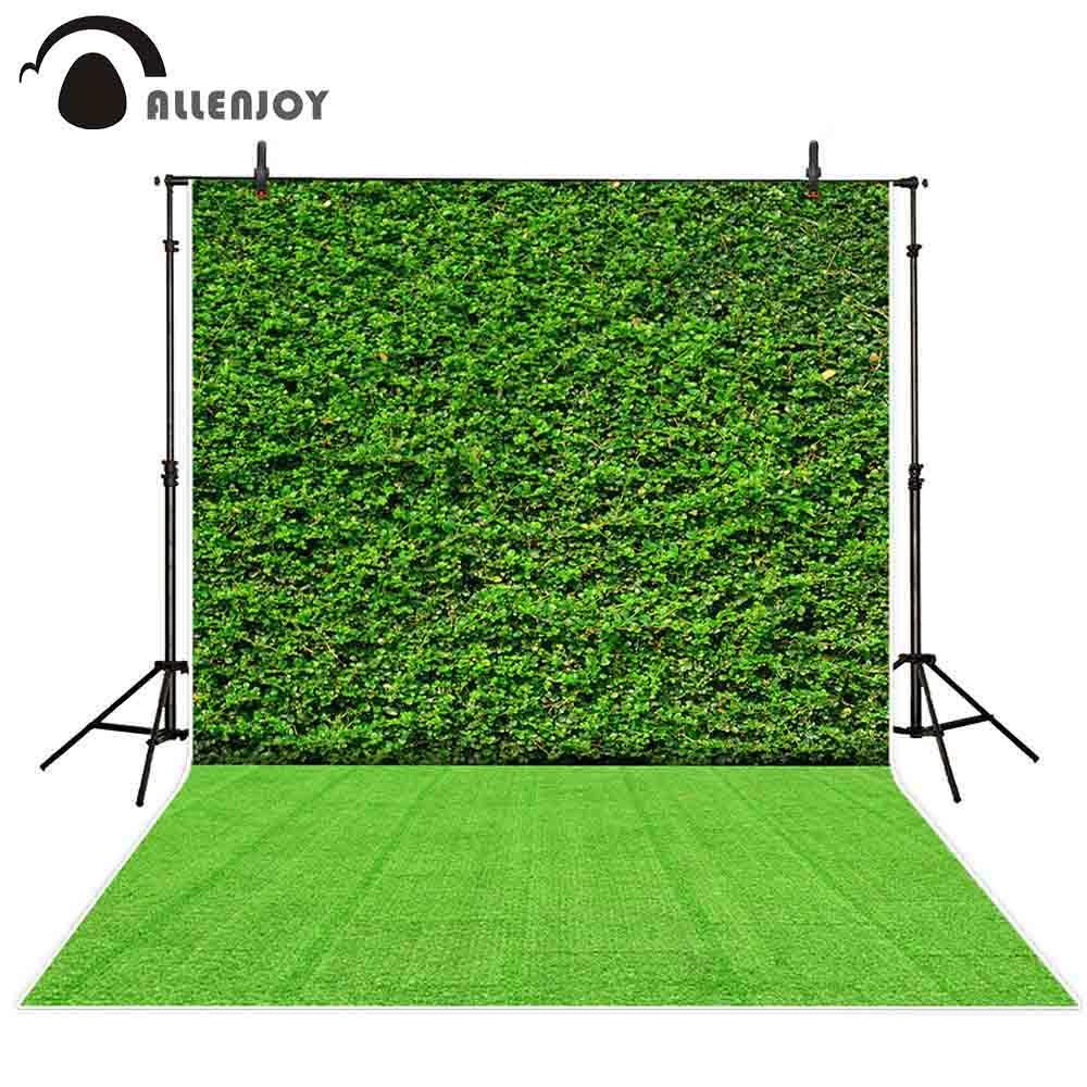 all'ingrosso foto sfondo photocall pianta verde decorazione della parete erba all'aperto festa celebrazione attività fotografia fondali