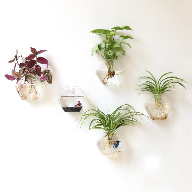 Mkono 2 Adet Duvara Monte Cam Vazo Duvar Asılı Ekici Bitki Saksı Küçük Bitkiler Teraryum Ev Dekor, altıgen Şekli