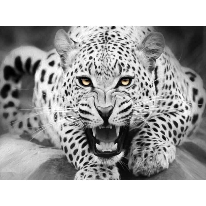 0329ZC132 Home wall Deco picture DIY number oil painting children Graffiti white Calmly leopard animal painting by numbers