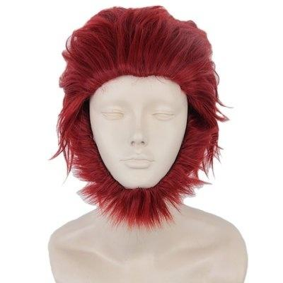 Anime Cosplay Party Costume Wigs for Fate Zero Servant Rider Short Red