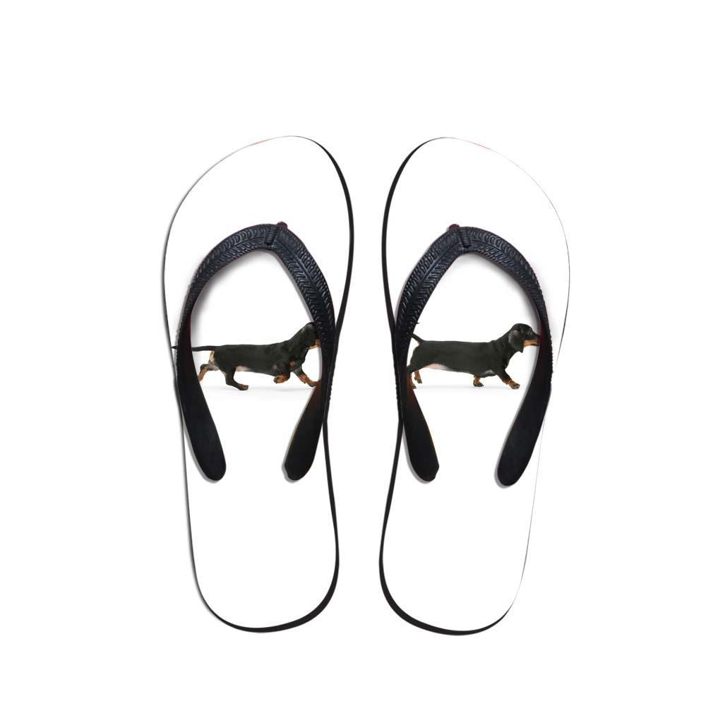 Commercio all'ingrosso Hawaii carino bassotto ragazze scarpe estate signora pantofole casual corgi Hound donne stampa gruppo infradito dropshippin