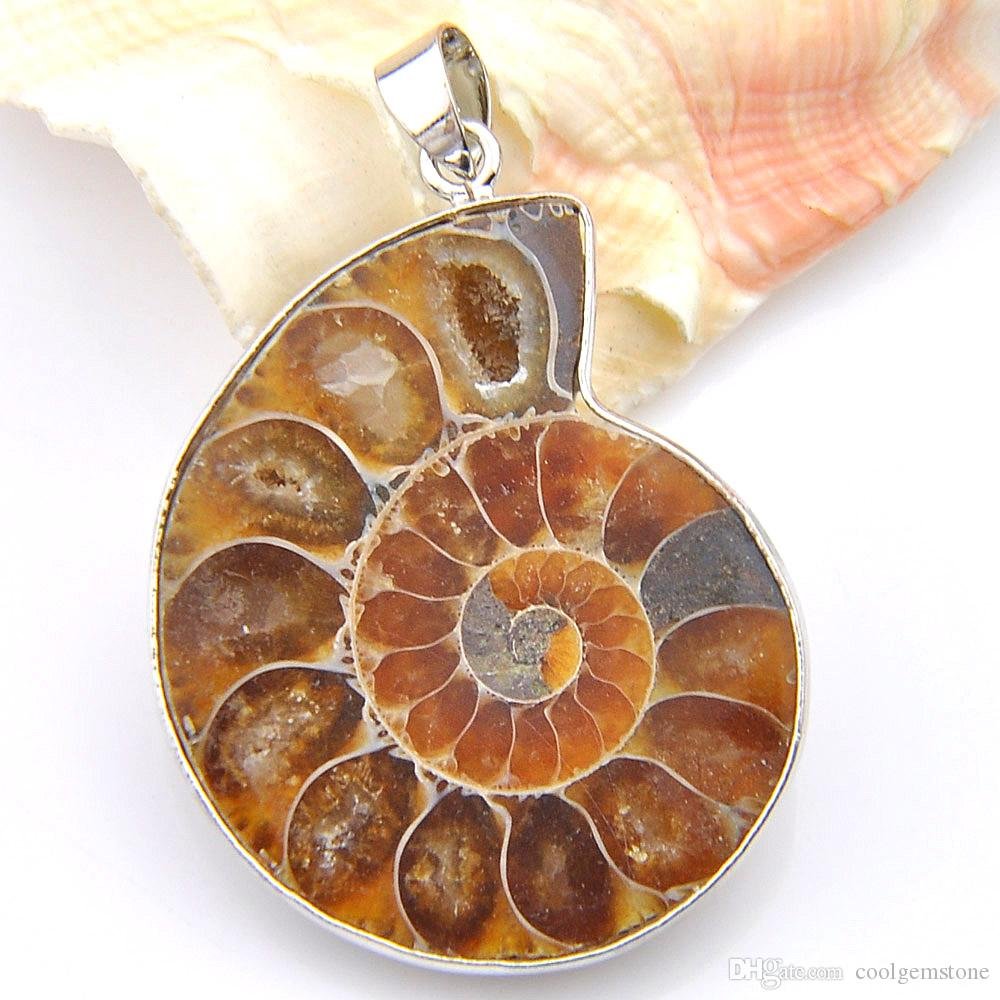 5 Pcs/Lot Unique Unisex Accessories Awesome Natural Stone Ammonite fossils 925 Silver Plated floating charm locket Pendant Necklaces