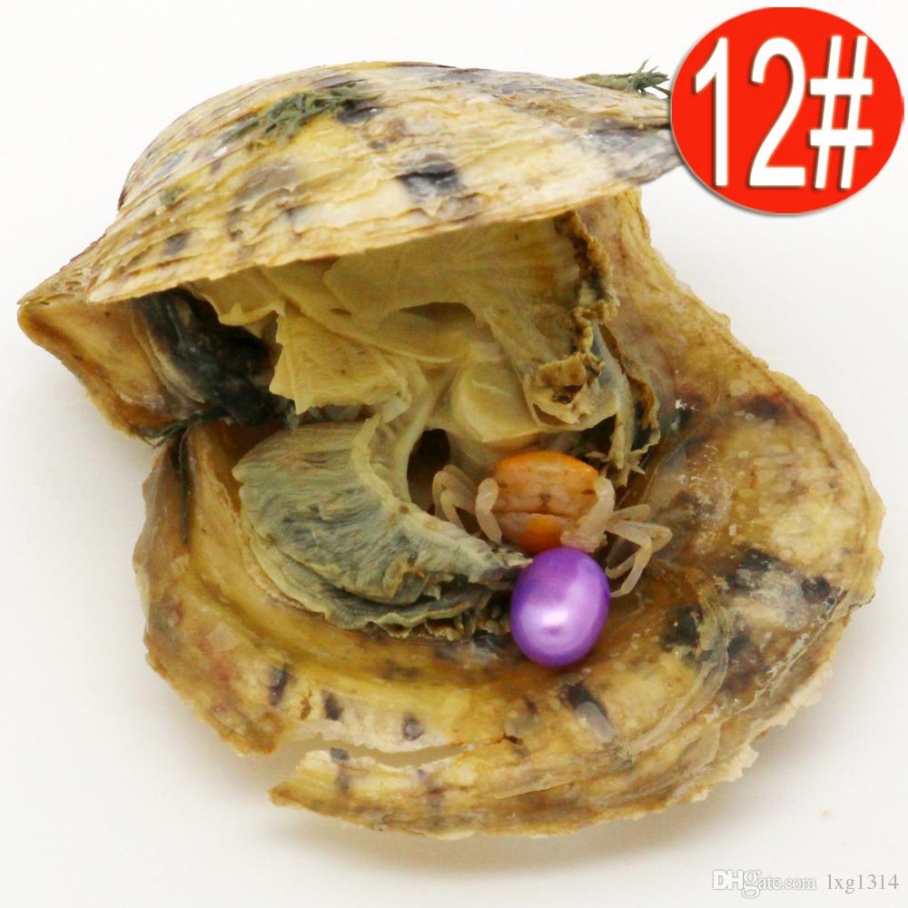 Wholesale Vacuum Packaging AAA6-8mm Silver Dye Purple Rice Salted Water Japan Akoya Pearl Oyster Shell