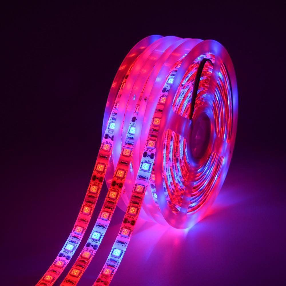 LED가 빛을 성장 전체 스펙트럼 5M LED 스트립 조명 5050 LED 꽃 식물 온실 수경 식물 성장을위한 식물 성장 램프