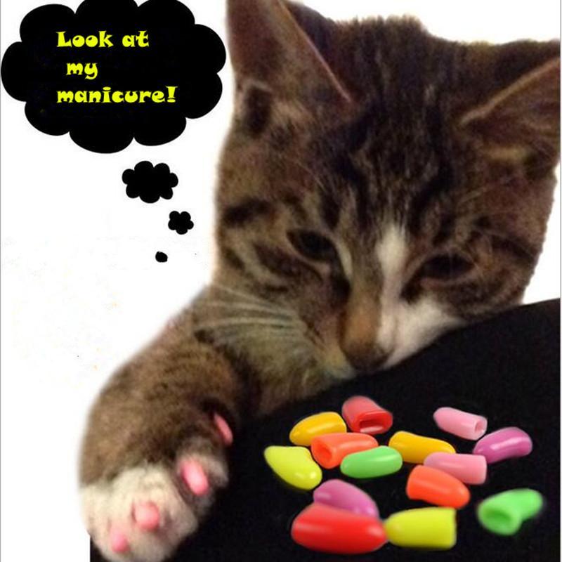 CW009 Pet Dog Cat Nail Caps 20 pcs / lot Pet Cat Dog Nail Nail Grooming Floor Protect Claw Control Soft Paw Caps XS, S, M, L