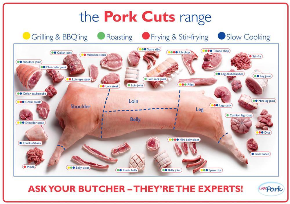 Pork Cuts Pig Diagram Poster High Quality Canvas Oil Painting Wall Art Picture For Living Room Modern Prints On Canvas Unframed