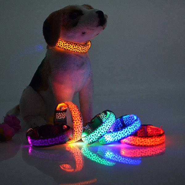 LED Leopar Noktalar Aydınlık Led Floresan Köpek Yaka Pet Malzemeleri Anti-kayıp Boyutu S-XL