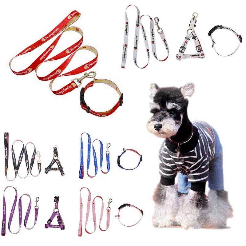 Teddy Dog Leash Set Pequeno Médio Pet Coleiras de Cachorro Tração Macia Corda Cinta Peito Anti-perdido Cadeia Pet Suprimentos Acessórios HHA667