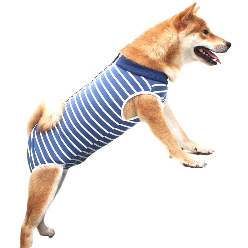 Hot-Dog-Recovery-Anzug Puppy Medical Care Anzug Bekleidung und nach der Operation Wear Anti lecken Wunden Hilfe Postoperativ Healing M