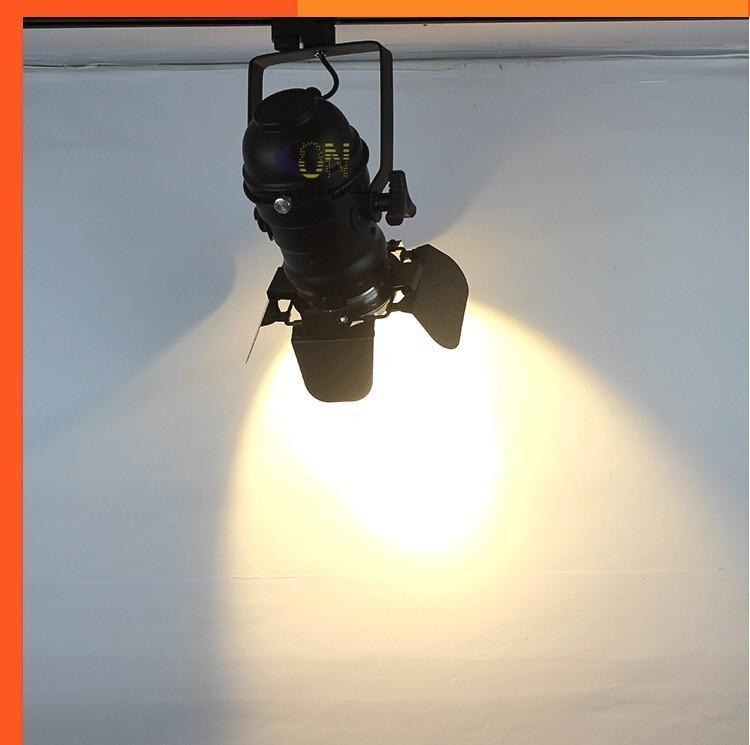 Ücretsiz Kargo Modern COB 30 W LED Parça Işıklar AC85-265V Bez Ayakkabı Mağazaları için LED Ray Lambaları Spot Mağazalar Sanat galerisi