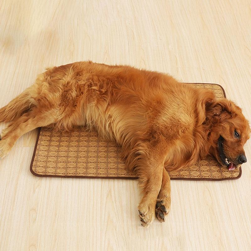 양면 애완 동물 매트 만화 꽃 여름 냉각 따뜻한 매트 항균 방지 진드기 패드 개 고양이 침대 쿠션 사계 펜을 사육