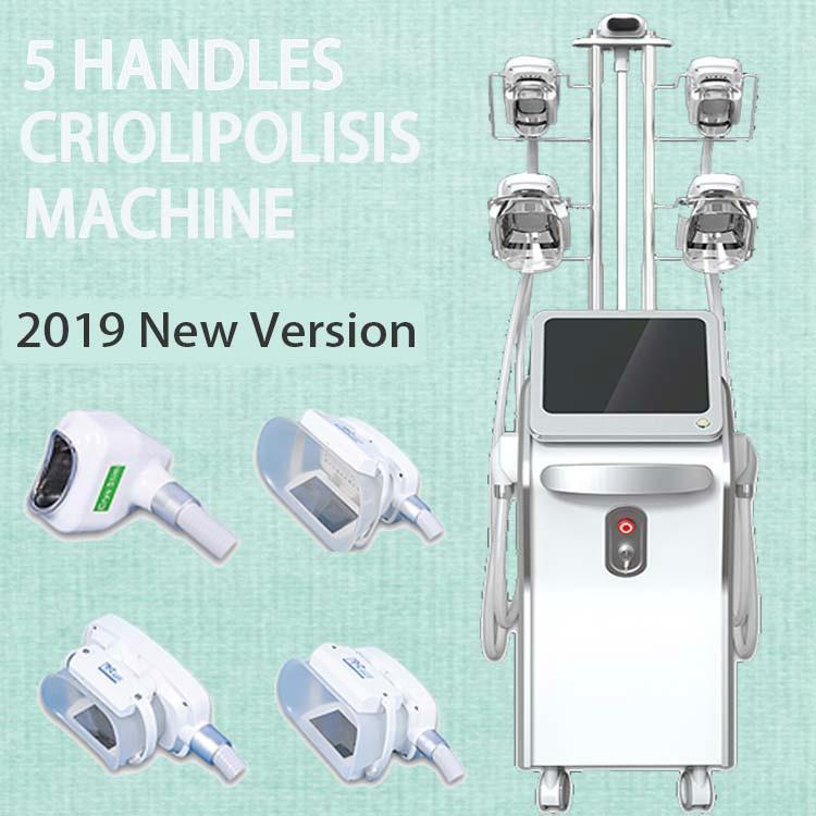Machine mince de perte de poids de congélateur de dispositif professionnel de cryothérapie d'usine pour Criolipolisis 5 poignées pour la graisse corporelle réduisent