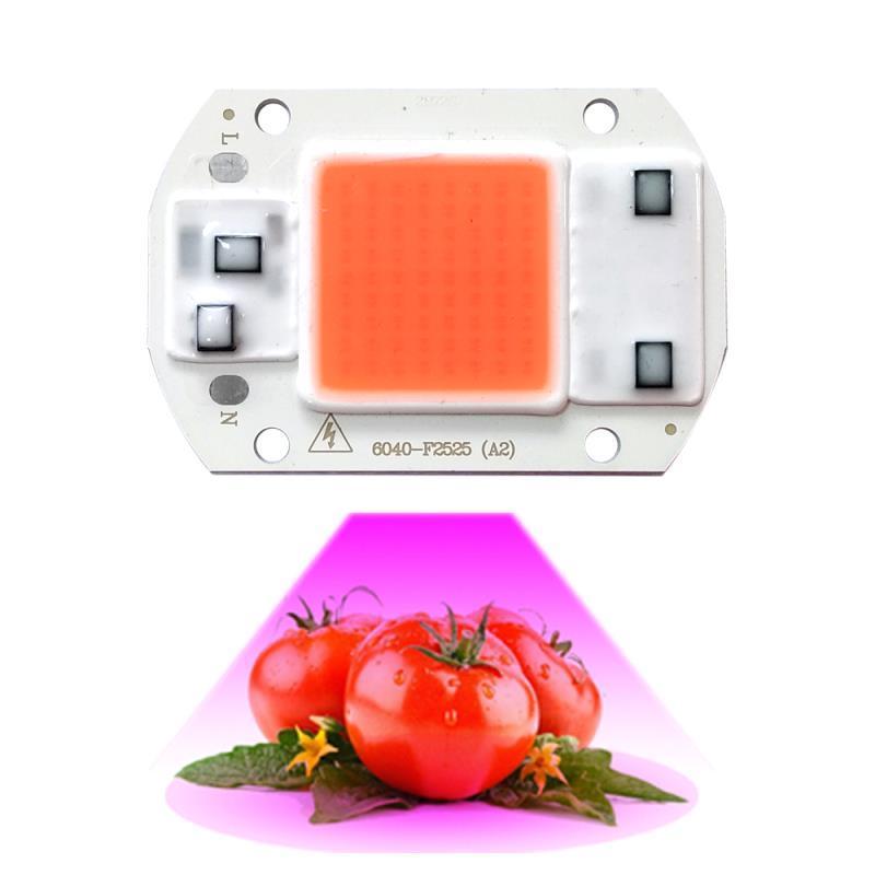 10 قطعة / الوحدة led تنمو ضوء رقاقة 20 واط 30 واط 50 واط ac220v / 110 فولت الطيف الكامل 380nm ~ 780nm أفضل للأجهزة الدفيئة الزراعة المائية تنمو diy لمصباح LED