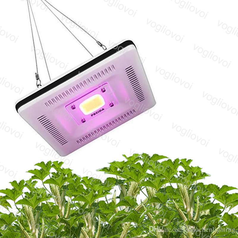 Full Spectrum led grow lights 50W COB Indoor Plant Vegetable Flower Growing Flood Light Without Noice DHL