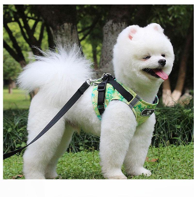 La venta del nuevo diseño de 1,5 m collar de perro con los correos reflectante Perros Arneses de malla chaleco arnés del perro para los perros Medio mascotas de dibujos animados Conductores de venta al por mayor