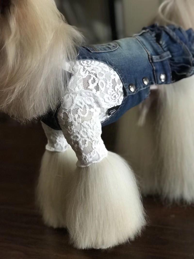Animaux Produits Chiens Mode Jean Robes Petit chiot chihuahua de chien maltais Yorkshire Terrier Vêtements