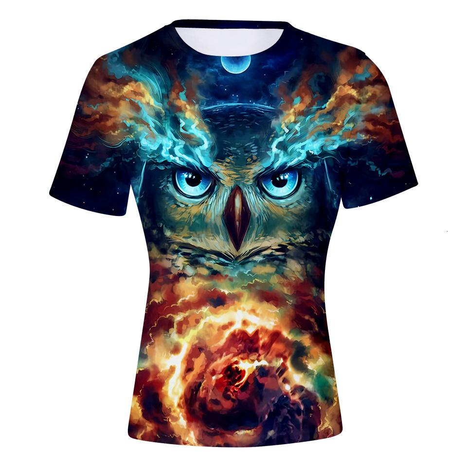 Owl Sky Starry 3d Round Collar 3dt Shirt Male T Shirts