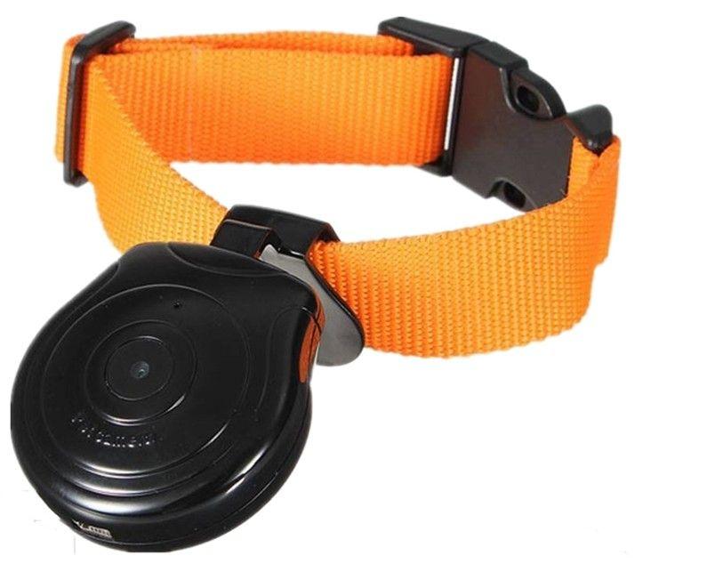 Mini appareil photo numérique enregistreur vidéo DVR caméra collier de chien enregistreur vidéo pour chien chat