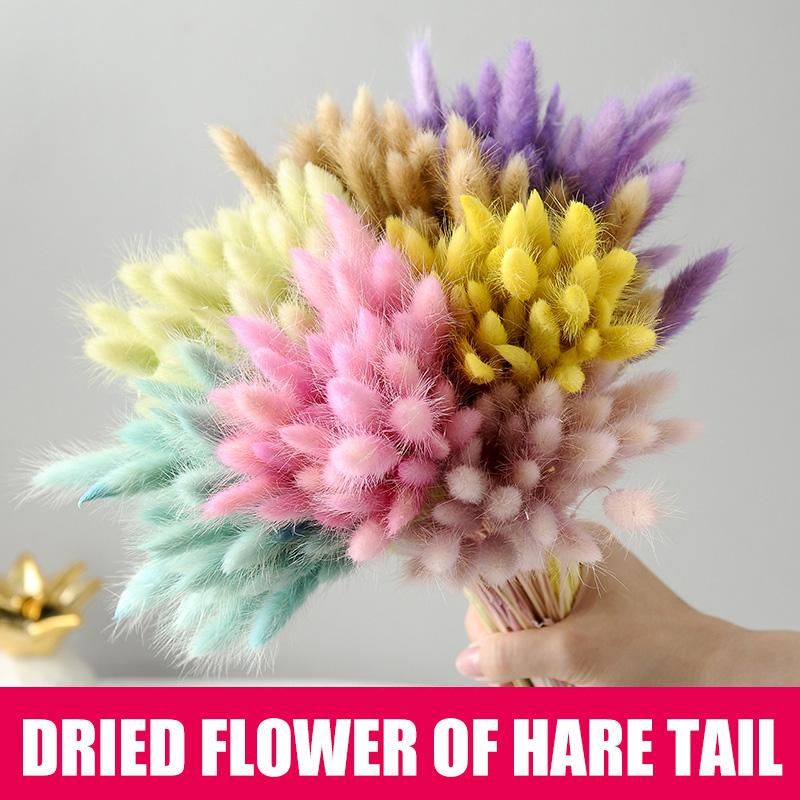 High 50 Pcs Dried Flower Grass Decoration Photography Props for Home Store Wedding UEJ