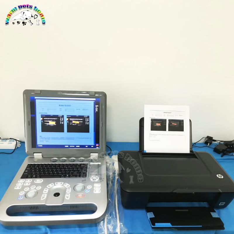 3D Color Doppler ultrasuoni Macchina per il gatto del cane Animali 128G portatile apparecchiature ad ultrasuoni veterinaria Ultrasound Scanner