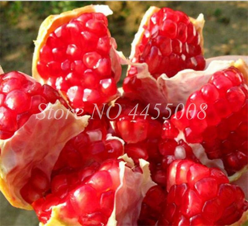 100pcs / bag Seeds Red Pomegranate Fruit Home Plant Outdoor Delicious Fruta Tree Bonsai Very Big &Sweet for Home Garden Planting
