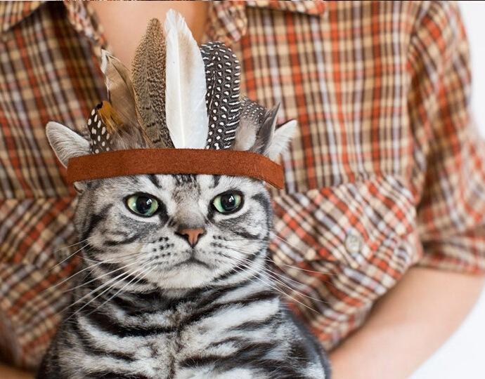 Cute pet copricapo cappello stile indiano cane cappelli per animali accessori gatto cane capi ornamenti per capelli decorazioni per animali domestici forniture