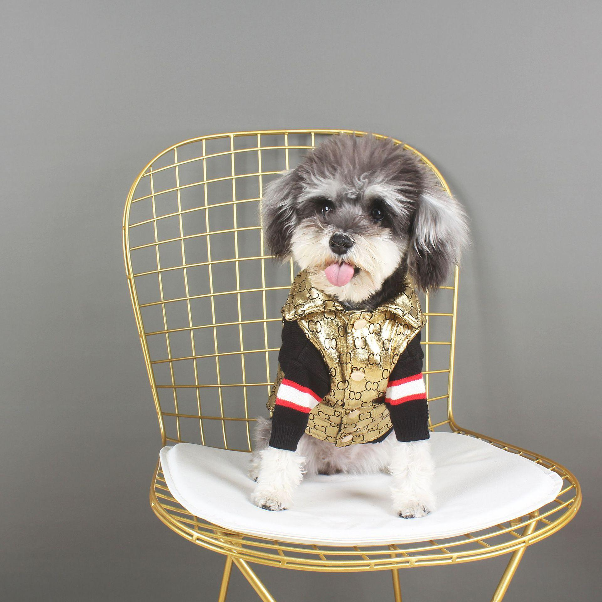 أزياء لامعة ذهبية الحيوانات الأليفة القطن الصدرية أوروبا وأمريكا الساخن الكلاب القطط معاطف بلدغ أفطس العصرية الحيوانات الأليفة Appearl الكلب لوازم بالجملة