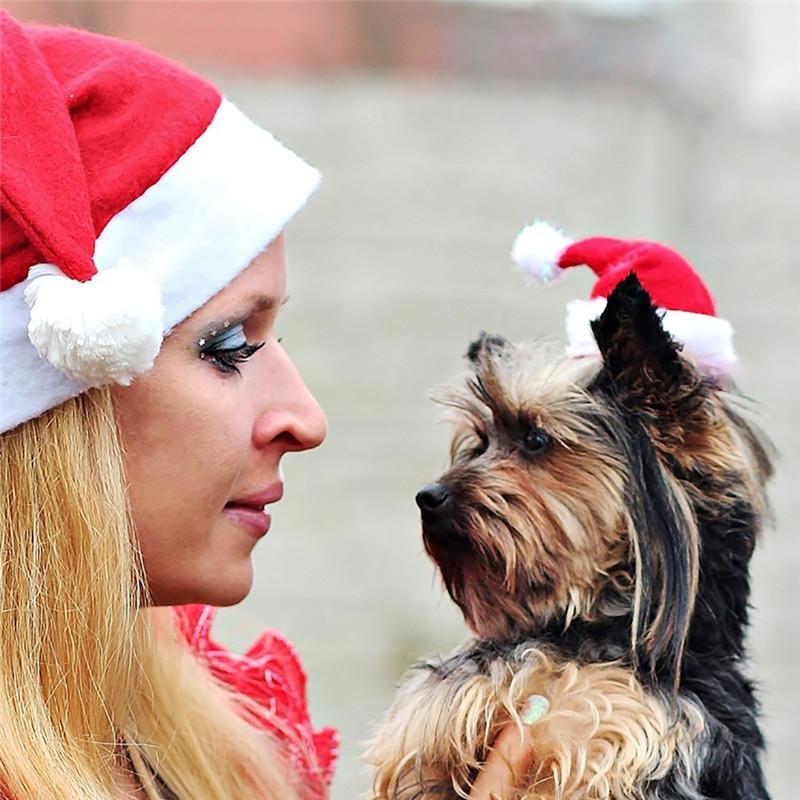 Pet Supplies Christmas Hat Decorations for Home Plush Dog Decor Pet Cat Dog Christmas Santa Claus Winter Warm Party Puppy Hat