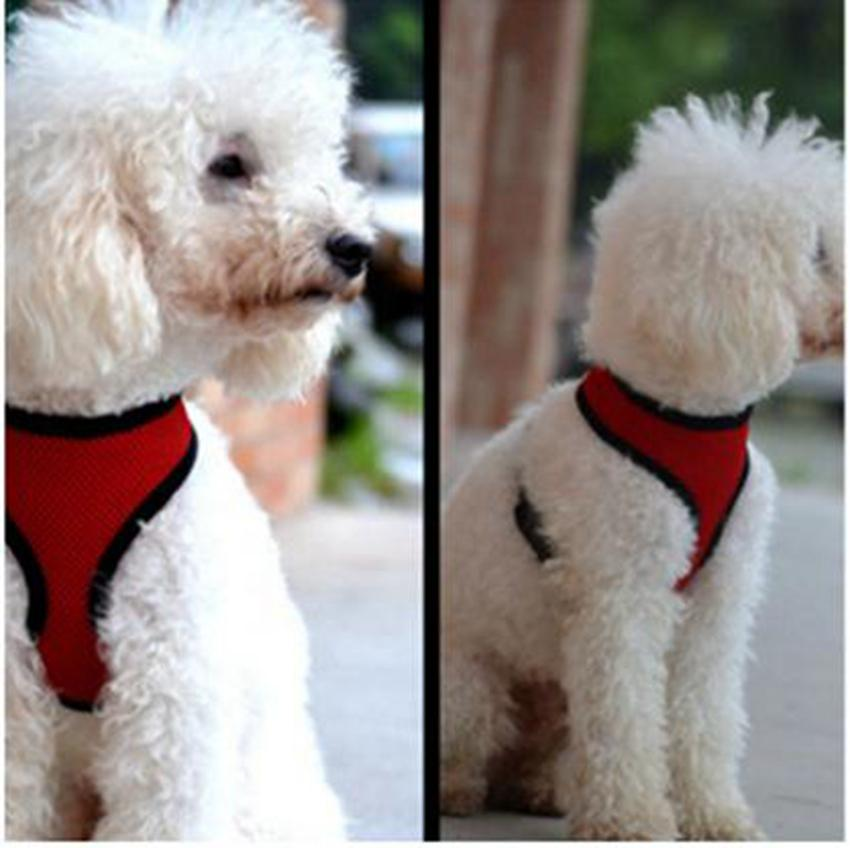 Pet Mesh Dog Harness Dog Harness Vest Training Suit Small Medium Dogs Cats Chest Strap Pet Clothes BBA3