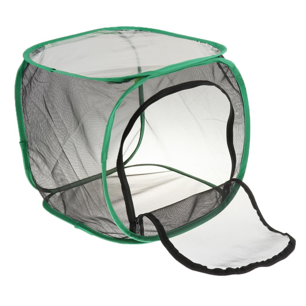 Dobrável Insect and Butterfly Habitat Terrário Net Breeding gaiola Incubator